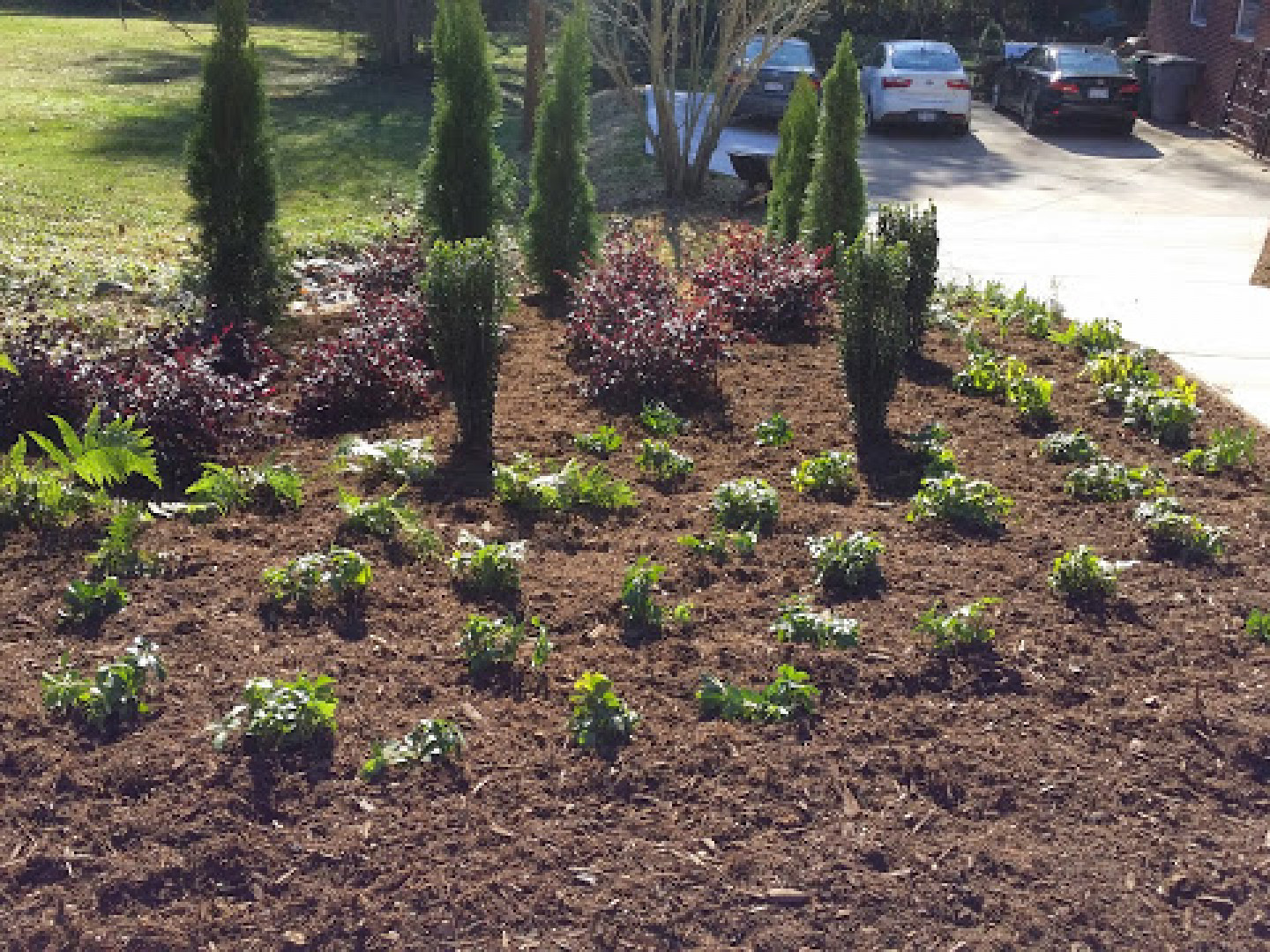 Trust A Local North Carolina Landscape Contractor With Your Project